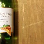 Weinduell: Gallo Turning Leaf Zinfandel vs. Gallo Zinfandel – Welcher ist besser?