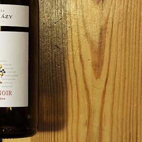Esterhazy Pinot Noir – Wie überzeugend ist das noble Weinschloss?