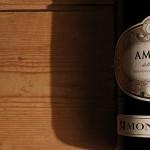 Amarone della Valpolicella – Was kann der Edelwein von Denner?