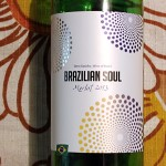 Brazilian Soul Merlot – Kann brasilianischer Wein überzeugen?