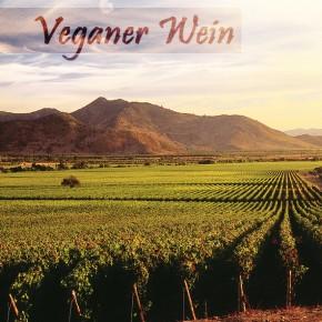 Veganer Wein: Was dürfen Veganer trinken?