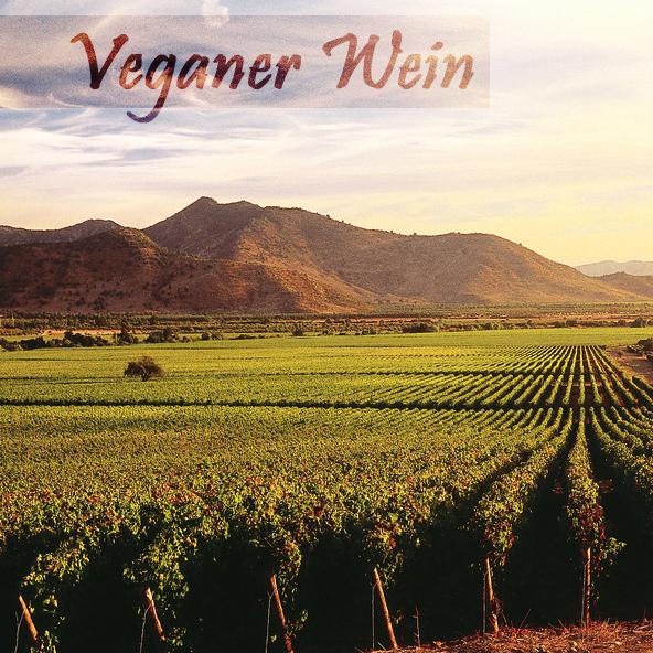 veganer-wein-cover