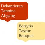 Weinsprache – Diese Begriffe solltest du kennen