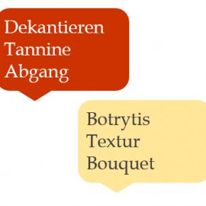 Weinsprache - Diese Begriffe solltest du kennen