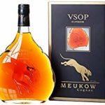 Cognac Test: Die besten 14 Cognac im Vergleich